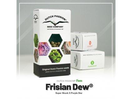 Frisian Dew | Dutch Passion