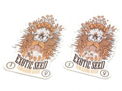 Tangerine Kush | Exotic Seeds