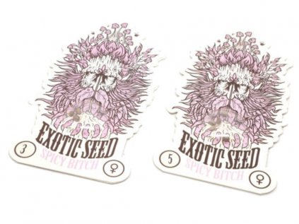Spicy Bitch   Exotic Seeds
