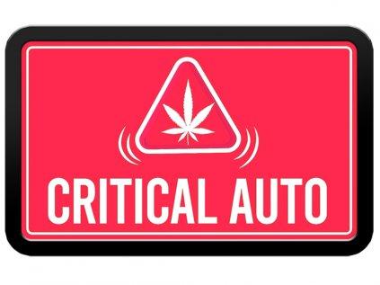 Original Auto Critical | Fast Buds