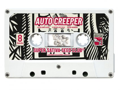 Creeper AUTO | Super Sativa Seed Club