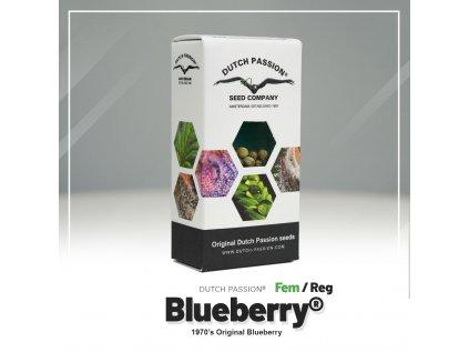 Blueberry® | Dutch Passion