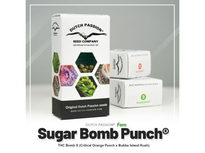 Sugar Bomb Punch® | Dutch Passion