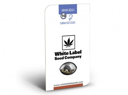 Guava Jelly - American Line - White Label | Sensi Seeds