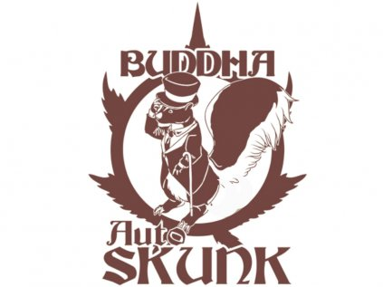 Skunk AUTO | Buddha Seeds