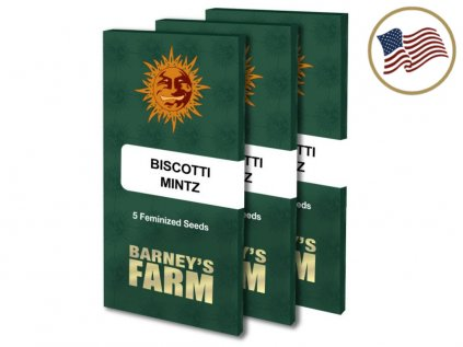 Biscotti Mintz™   Barneys Farm