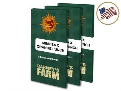 Mimosa X Orange Punch™ | Barneys Farm