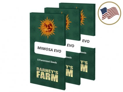 Mimosa EVO™ | Barneys Farm