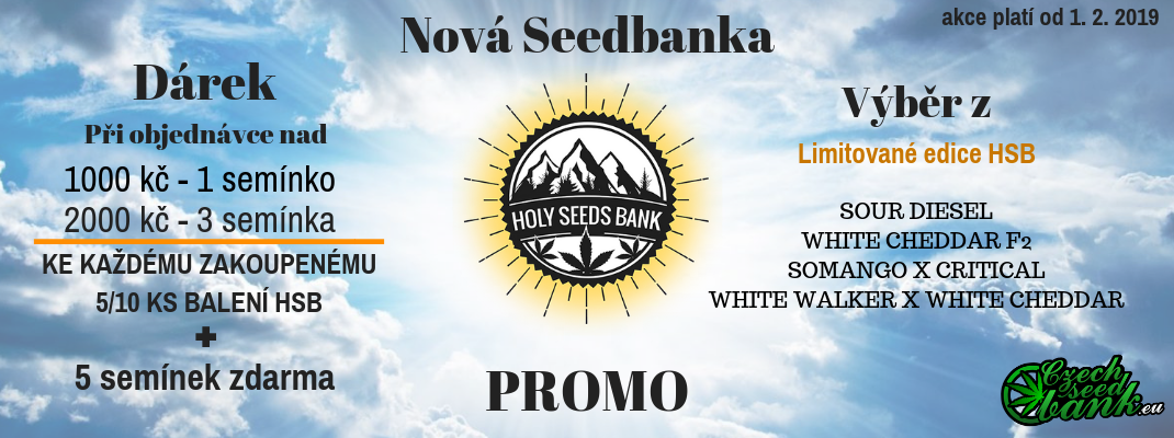 Holy Seed bank