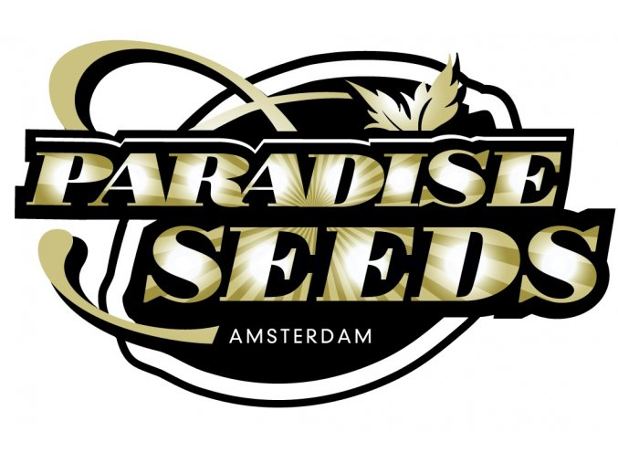 paradise logo