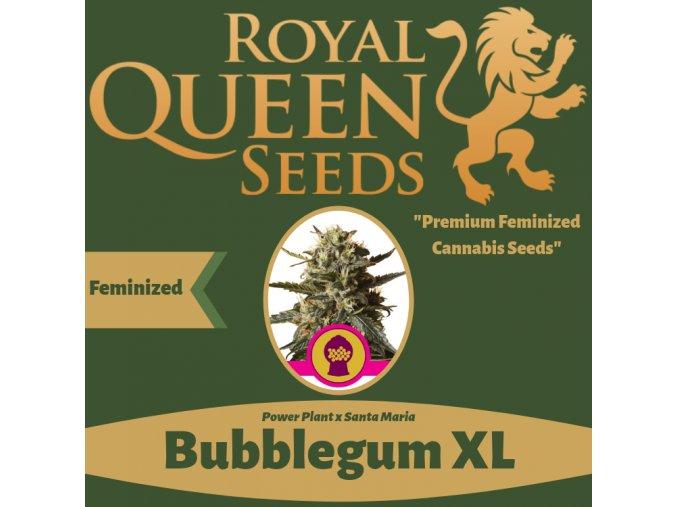 Bubblegum XL