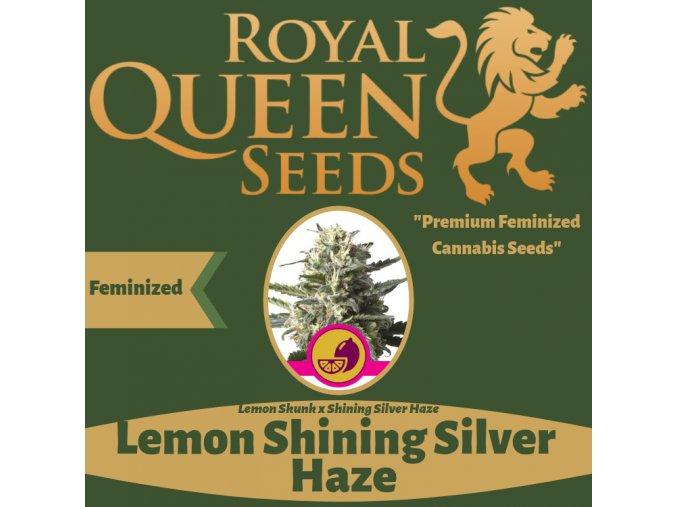 Lemon Shining Silver Haze