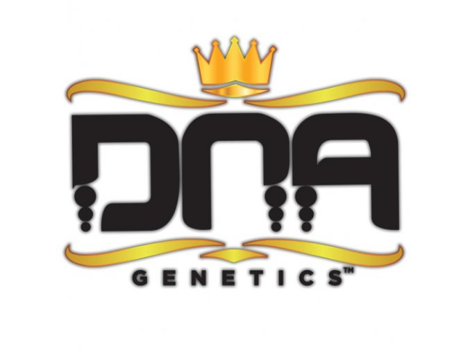 DNA Genetics Logo Black