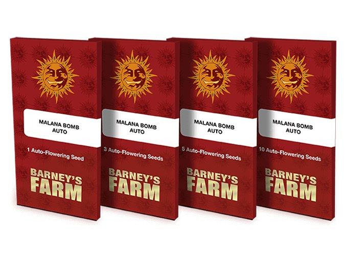 malana bomb auto packet 1 seed