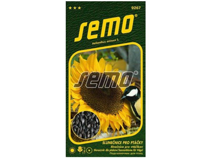 9267 semo kvetiny letnicky slunecnice rocni pro ptacky 256x500
