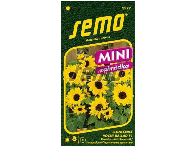 9272 semo kvetiny letnicky slunecnice rocni ballad 256x500