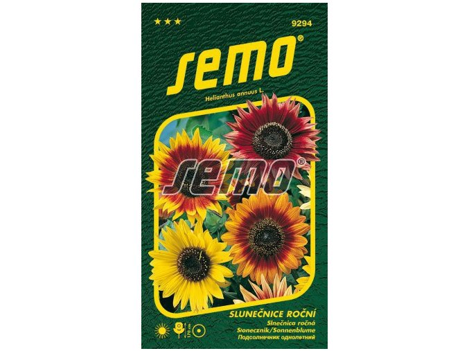 9294 semo kvetiny letnicky slunecnice rocni autumn beauty 269x500