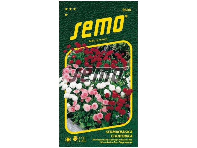 9605 semo kvetiny trvalky sedmikraska chudobka plnokveta smes 269x500
