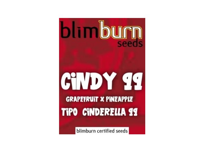 certified blimburn seeds CINDY 99 feminized