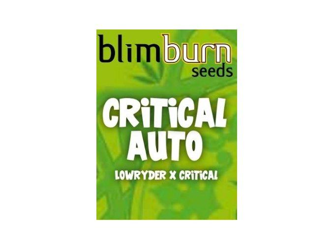 blimburn seeds AUTO CRITICAL