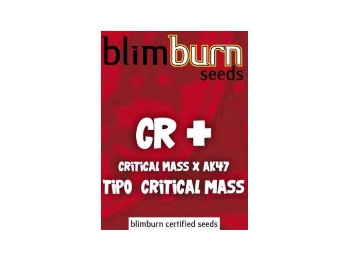 certified blimburn seeds CR PLUS feminized