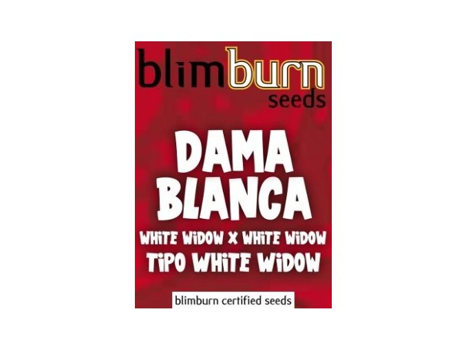 certified blimburn seeds DAMA BLANCA feminized