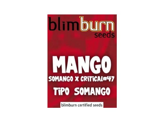 certified blimburn seeds MANGO feminized