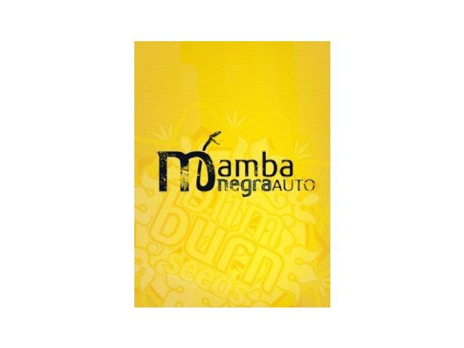 blimburn seeds mambanegra AUTO
