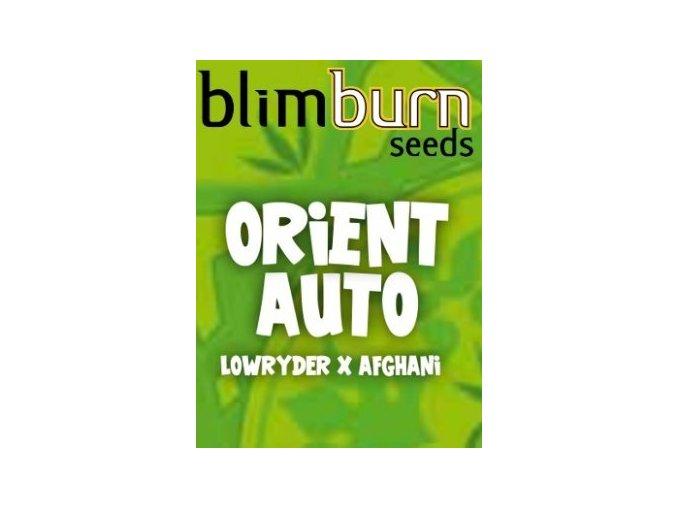 blimburn seeds AUTO orient