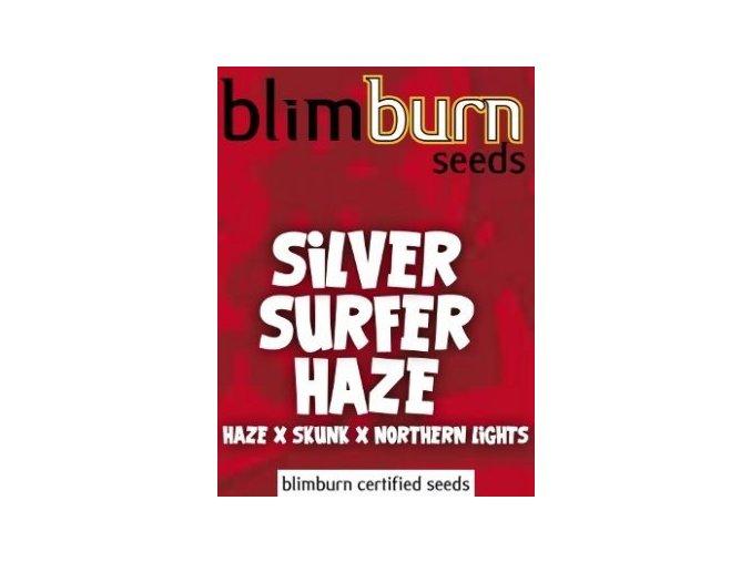 certified blimburn seeds SILVER SURFER HAZE feminized