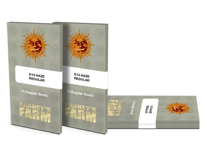g13 haze regular packet 1 seed