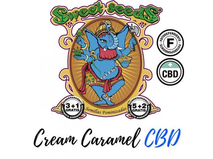 cream-caramel-cbd-sweet-seeds-feminized-semena-konopi-marihuany