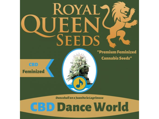CBD Dance World