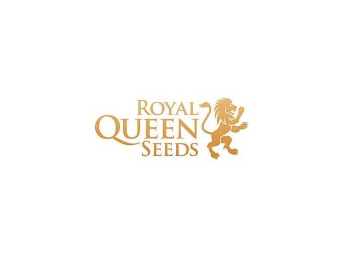 royal queen seeds special kush 1 5ks