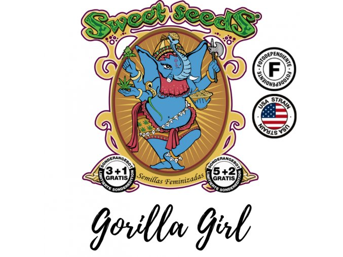 Gorilla Girl F1 Fast Version