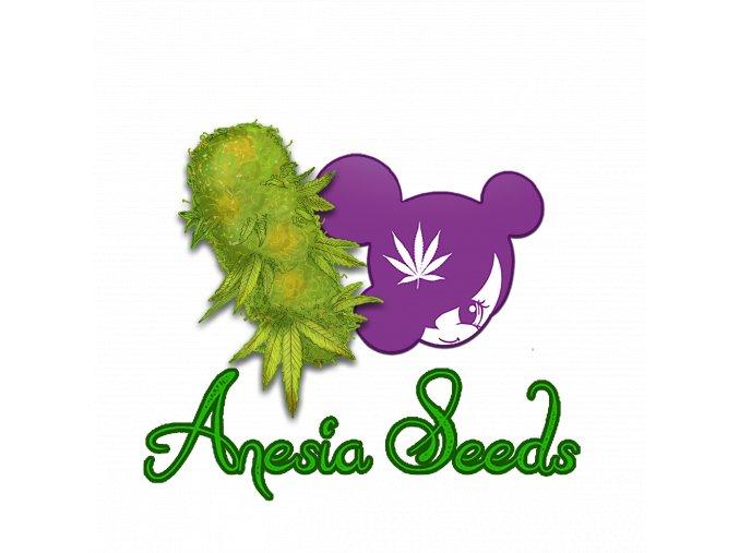 Anesia Logo transparent