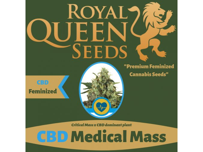 CBD Medical Mass