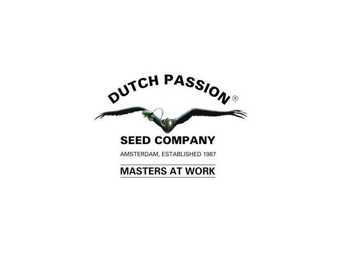 dutch passion 512x270
