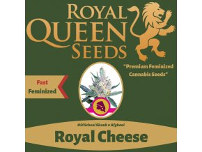 Royal Cheese Fast