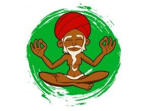 grand master kush regular cannabisseeds