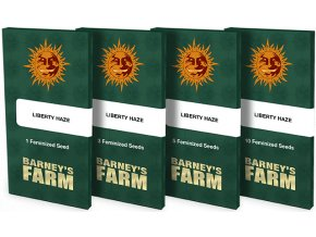 liberty haze packet 1 seed