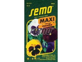 9681 semo kvetiny trvalky maceska zahradni velkokveta xxl 269x500