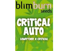 blimburn seeds AUTO CRITICAL