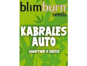 blimburn seeds AUTO kabrales