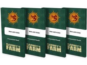 semena konopi bad azz kush barneys farm posemenucz