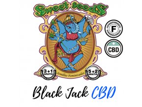 black-jack-cbd-sweet-seeds-feminized-semena-konopi-marihuany