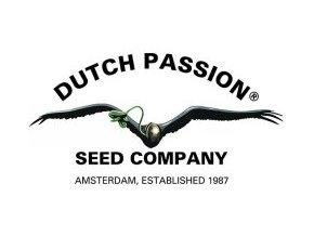 dp logo 2016