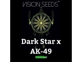 Dark Star x AK-49