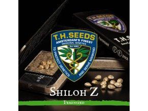 Shiloh Z