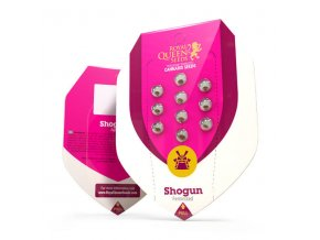 shogun (1)